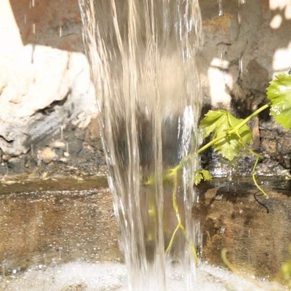 Marche pour l'eau